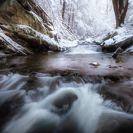 Cold Winter Stream by Bill Wakeley
