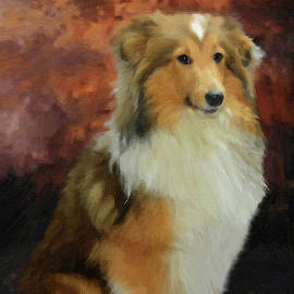 Collie - DWP1361129 by Dean Wittle