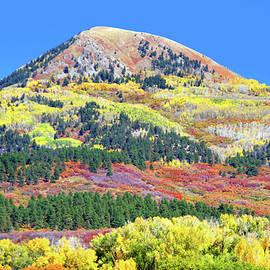 Colorado Autumn Color by Douglas Taylor