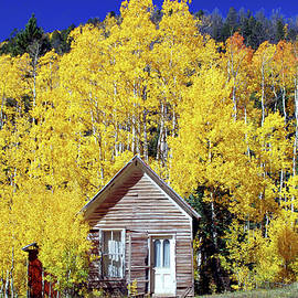 Colorado Mountain Cabin by Douglas Taylor