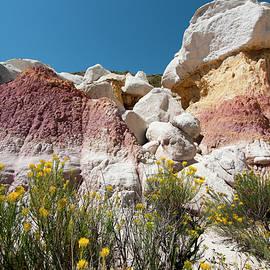 Colorado Paint Mines 3 by John Bartelt
