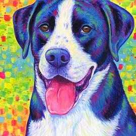 Colorful Bicolor Dog with Rainbow Colors by Rebecca Wang