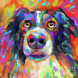Colorful Border Collie Dog art by Svetlana Novikova