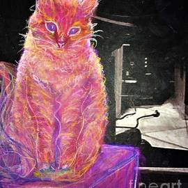 Colorful Cat Living In Black And White World by Cara Schingeck