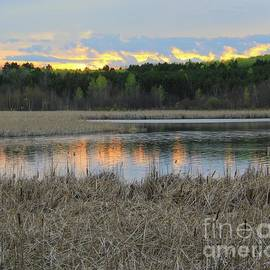 Colorful Evening Minnesota by Ann Brown