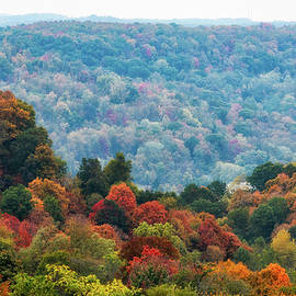 Colorful Valley  by Rosette Doyle