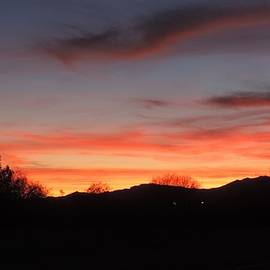 Colors of Arizona by Bill Tomsa