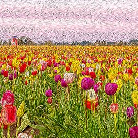 Colors of Holland by Angel Wanner