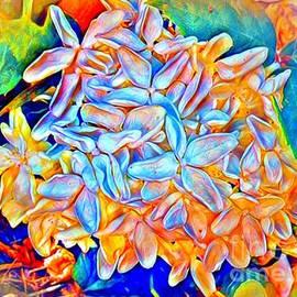 Colors Surrounding A Summer Hydrangea by Debra Lynch