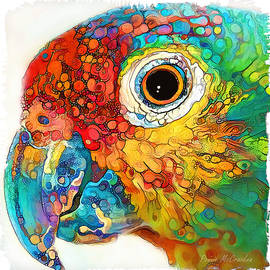 Colourful Parrot by Pennie McCracken