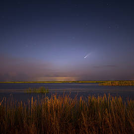 Comet in the Everglades by Mark Andrew Thomas