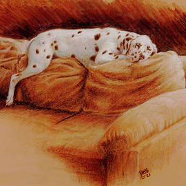 Comforts of Home by Pris Hardy