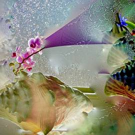 Conch Shell and Orchid Mirage by Phyllis Kaltenbach