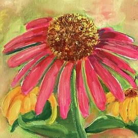 Coneflowers  by Nancy Rabe