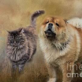 Conflict Between Friends by Eva Lechner
