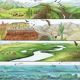 Contrasting Habitats by Trena McNabb