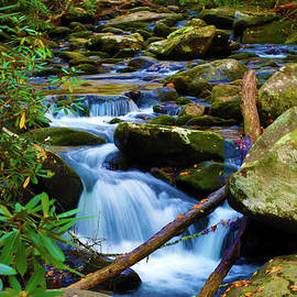 Cool Blue Mountain Stream by Southern Arts