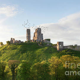 Corfe Castle ruin sunrise in Dorset England by Simon Bratt Photography LRPS