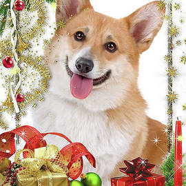 Corgi with Christmas Presents by Kathy Kelly