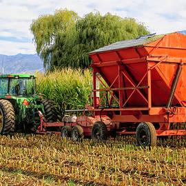 Cornfield Harvest In Logan by Donna Kennedy
