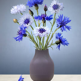 Cornflowers in Mauve Vase by Spadecaller