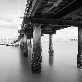 Coronado Pier off Bayshore Bikeway by William Dunigan