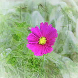 Cosmos in the Weeds by Larry J Bishop