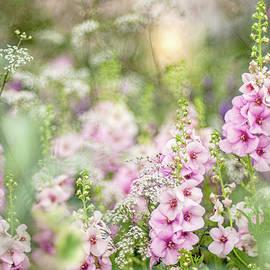 Cottage Garden by Jacky Parker