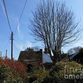 Cottage Garden by Kathryn Jones