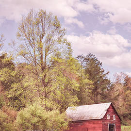 Country Barn in the Spring Pastures by Debra and Dave Vanderlaan