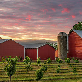 Country Color by Steve Luther
