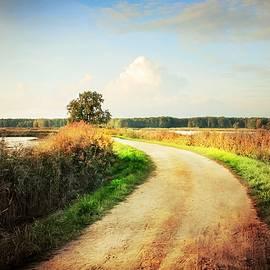 Country Road Along the Lake by Slawek Aniol