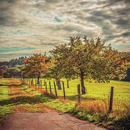 Country Road by Colorado Still Magnolia- Kim Parker