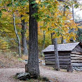Countryside Cabin by Arlane Crump