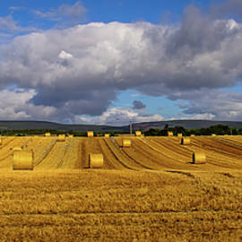 Countryside by Karen Sirnick
