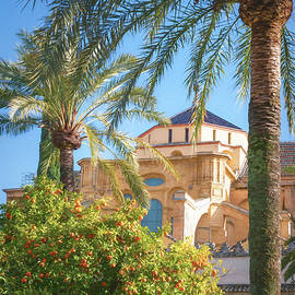 Courtyard of the Oranges Cordoba Spain by Joan Carroll