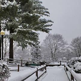 Covered with Snow by Lyuba Filatova