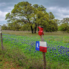 Cowboy Boots on the Willow City Loop by Lynn Bauer