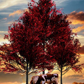 Cows in Sunset Light Under the Trees by Debra and Dave Vanderlaan