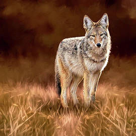 Coyote In Autumn by Donna Kennedy