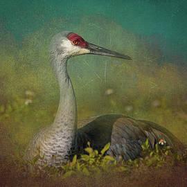Crane at Rest by Greg Thiemeyer