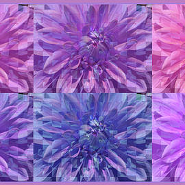 Crazy About Dahlia - Floral Photographic Design - Manipulated Dahlia Photography - Flower Collage by Brooks Garten Hauschild