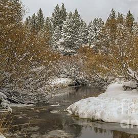 creek after the storm, El Dorado National Forest, California, USA  by PROMedias Obray