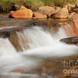 Creek side by Jeff Swan