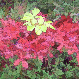 Creeping Juniper Art by Jerry Griffin