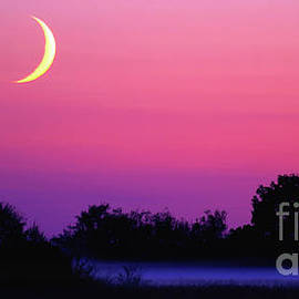 Crescent Moon At Dusk - Wide Vista by Douglas Taylor