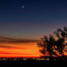 Sonoran Crescent Moon   by Saija Lehtonen