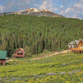 Crested Butte Cabins by Lorraine Baum