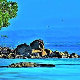 Crocodile on Beach Roko Island Torres Strait Queensland by Joan Stratton