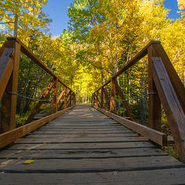 Crossing Into Fall by Nathan McDaniel